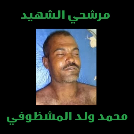محمد ولد المشظوفي